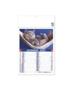 PET - Kalender Kätzen und Hunde
