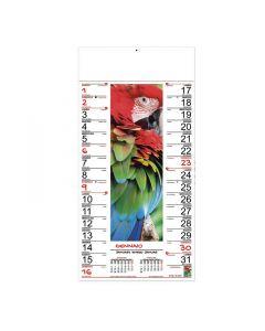COLOURS - Bildkalender Fantasie